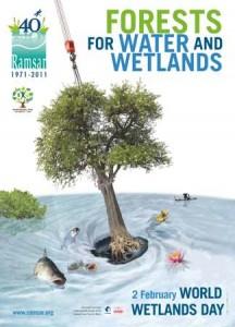 WWD Ramsar poster